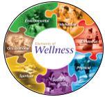 Traditional Wellness/Integrative Care Program